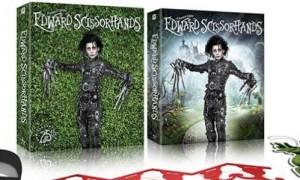 Edward-Scissorhands1-e1439324392425